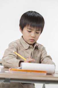 勉強をする少年の写真素材 [FYI00041926]