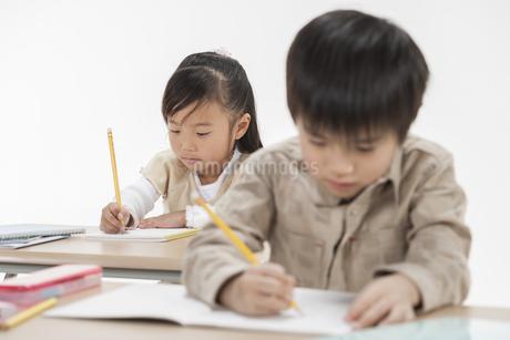 勉強をする子供たちの写真素材 [FYI00041930]