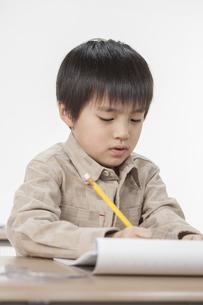 勉強をする少年の写真素材 [FYI00041932]