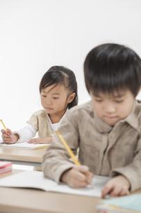 勉強をする子供たちの写真素材 [FYI00041940]