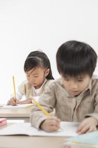 勉強をする子供たちの写真素材 [FYI00041946]
