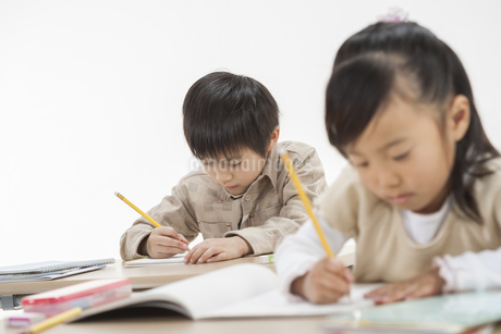 勉強をする子供たちの写真素材 [FYI00041952]