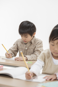 勉強をする子供たちの写真素材 [FYI00041953]
