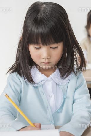 勉強をする少女の写真素材 [FYI00041957]