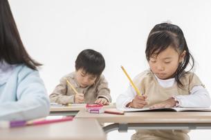 勉強をする子供たちの写真素材 [FYI00041966]
