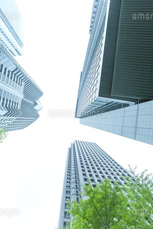 オフィス街の写真素材 [FYI00041993]