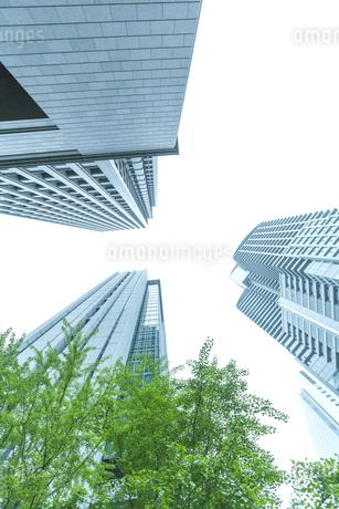 オフィス街の写真素材 [FYI00041995]
