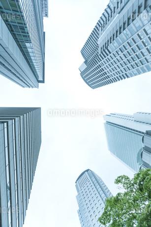 オフィス街の写真素材 [FYI00041997]