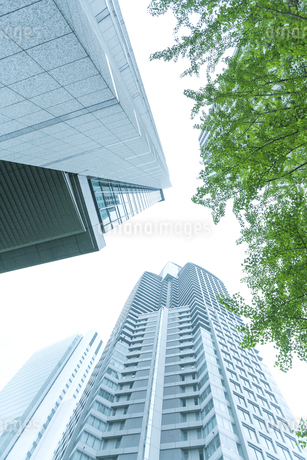 オフィス街の写真素材 [FYI00041999]