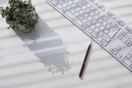 オフィスデスクの写真素材 [FYI00042043]