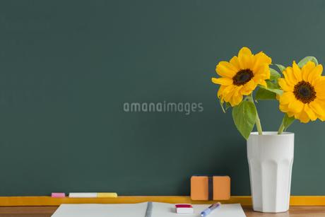 黒板とヒマワリの写真素材 [FYI00042157]