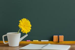 黒板とガーベラの花の写真素材 [FYI00042158]