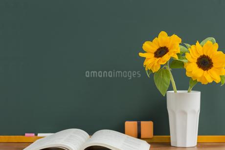 黒板とヒマワリの写真素材 [FYI00042166]