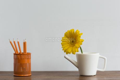 ガーベラの花と文房具の写真素材 [FYI00042203]