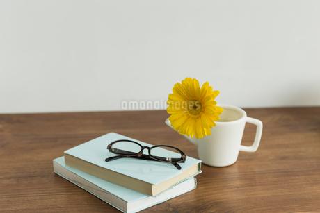 ガーベラの花と本の写真素材 [FYI00042206]