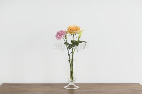 花瓶に挿している花の写真素材 [FYI00042308]