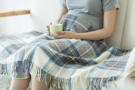 ソファーに座る妊婦の写真素材 [FYI00042341]