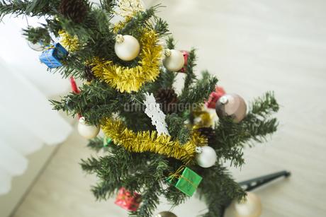 クリスマスツリーの写真素材 [FYI00042355]