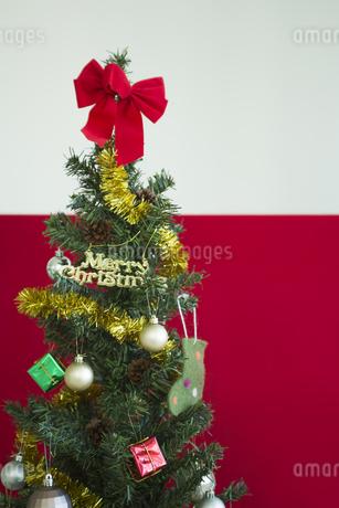 クリスマスツリーの写真素材 [FYI00042356]