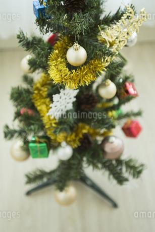 クリスマスツリーの写真素材 [FYI00042358]