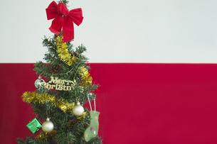 クリスマスツリーの写真素材 [FYI00042369]