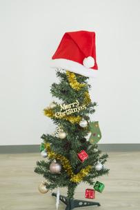 クリスマスツリーの写真素材 [FYI00042373]