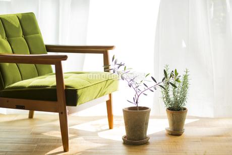 部屋の中にあるソファの写真素材 [FYI00042519]