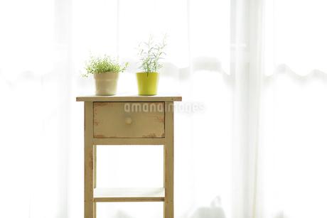 部屋の中にある家具の写真素材 [FYI00042529]