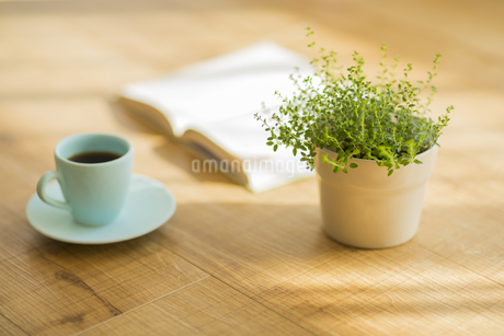 コーヒーと本と観葉植物の写真素材 [FYI00042546]