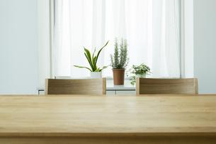 テーブルと椅子の写真素材 [FYI00042557]