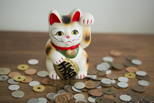 招き猫と硬貨の写真素材 [FYI00042599]
