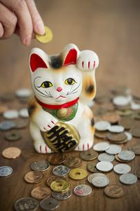 招き猫と硬貨の写真素材 [FYI00042610]