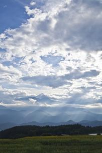 雲間から光が差し込むヒマワリ畑の素材 [FYI00042947]