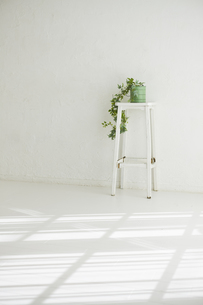 室内にある緑のインテリアの写真素材 [FYI00042962]