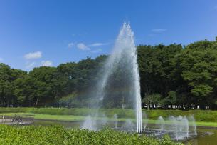 青空の公園の噴水に虹の素材 [FYI00042990]