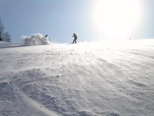 雪煙りの写真素材 [FYI00043002]