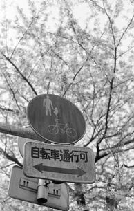 自転車通行可の写真素材 [FYI00043045]