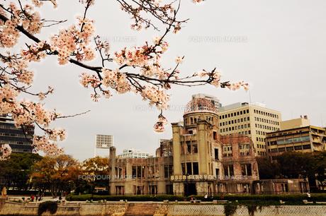 原爆ドームと桜の素材 [FYI00043129]