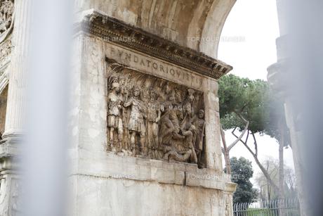 イタリアの素材 [FYI00043251]