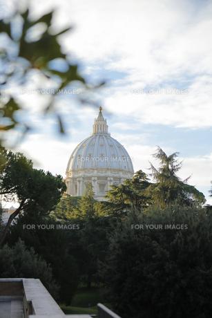 イタリアの素材 [FYI00043256]