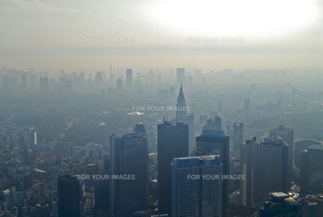 もやの中の新宿高層ビル群の写真素材 [FYI00043258]
