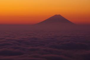 雲海と富士の写真素材 [FYI00043260]