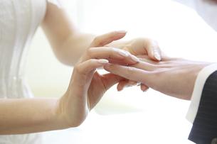 新郎新婦の結婚指輪交換の写真素材 [FYI00043318]