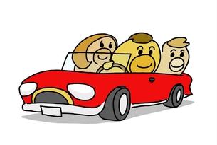 家族でドライブの写真素材 [FYI00043553]