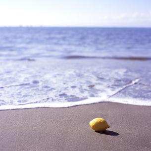 海岸のレモンの素材 [FYI00043714]