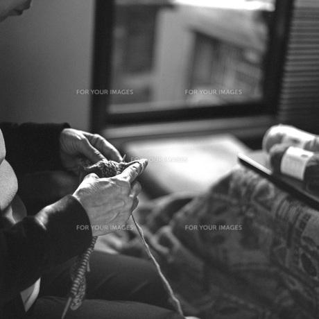 編み物をする手の素材 [FYI00043759]