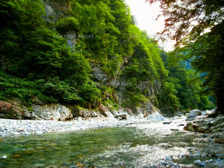 立山 黒部 峡谷 渓谷 鐘釣の写真素材 [FYI00044106]