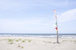 海辺のフラッグの写真素材 [FYI00044177]