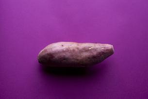 サツマイモ(紫バック)の写真素材 [FYI00044198]