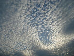 鱗雲の写真素材 [FYI00044372]